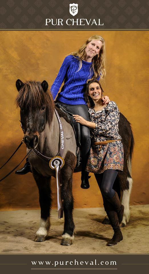 Thor fra Riddersholm, cheval islandais, au salon du cheval