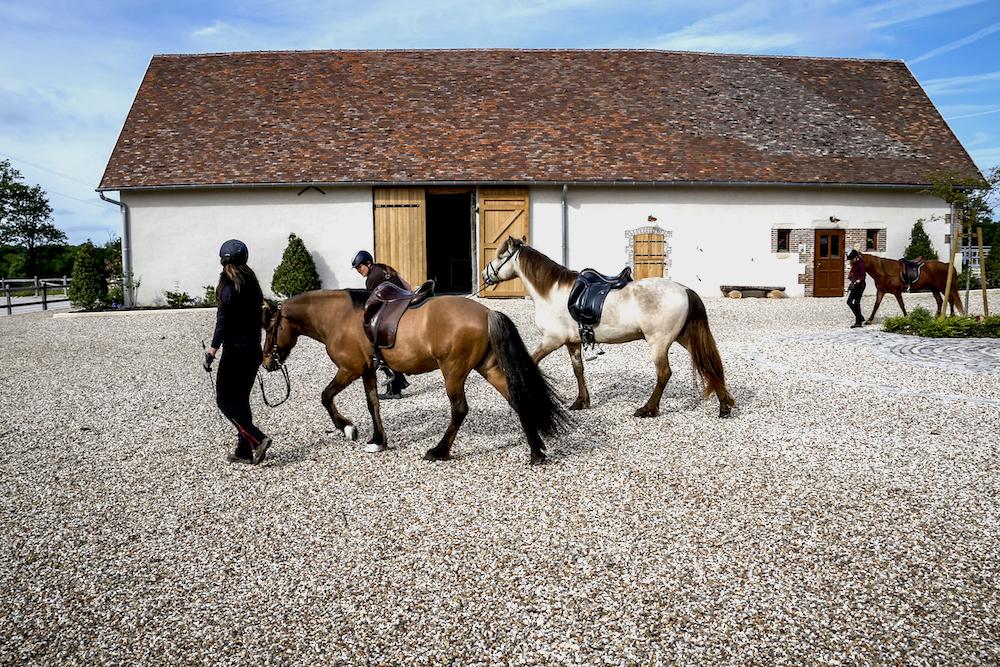 L'équipe de Pur Cheval va travailler ses chevaux islandais.