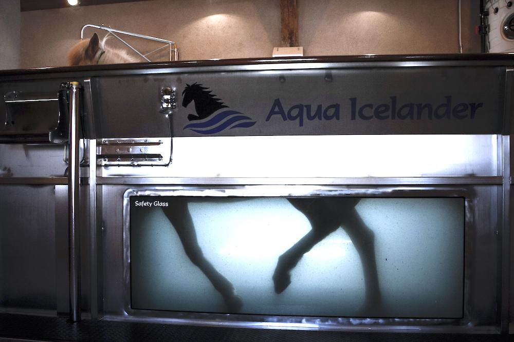 Marcheur aquatique de Pur Cheval